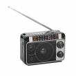 Радиоприёмник Ritmix RPR-171