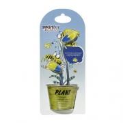 Наушники SmartBuy Plant Yellow/Blue